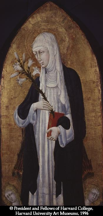 catherine of siena brophy don