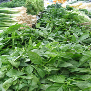Thumbnail image for Herbs.jpg