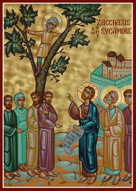 Zacchaeus in the sycamore.jpg