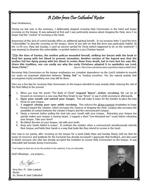 Simon Jude Phoenix Bulletin Letter January-23-2011.jpg