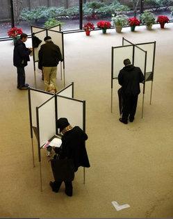 individual-voting.jpg